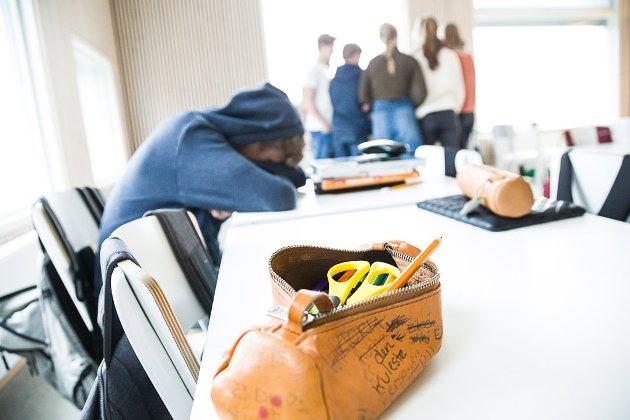 TRUSSEL: Det ideologisk drevne marerittet som kjennetegner skolen i Norge har fått lov til å vokse og bre seg i over 20 år, og truer med å ta knekken på en ellers flott, hardtarbeidende og fremtidsorientert ungdomsgenerasjon, skriver forfatteren.