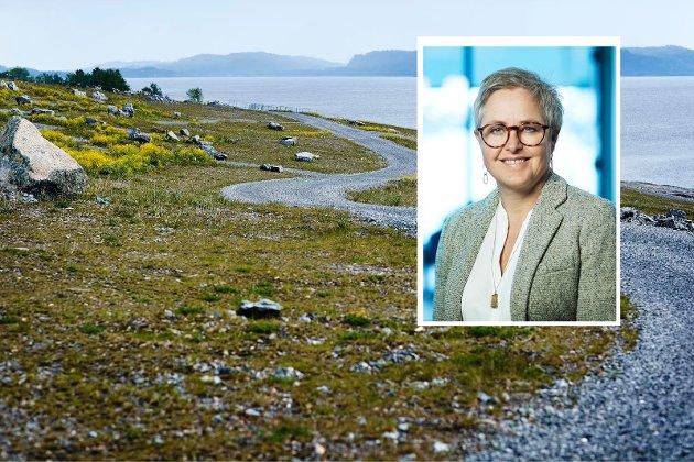 TILBAKEFØRES: NOAH bruker gipsen fra behandlingsprosessen til å gjenoppbygge Langøya etter hundre år med steinbrudd. Øya restaureres slik at den igjen kan brukes av allmennheten, skriver Tove Stuhr Sjøblom.