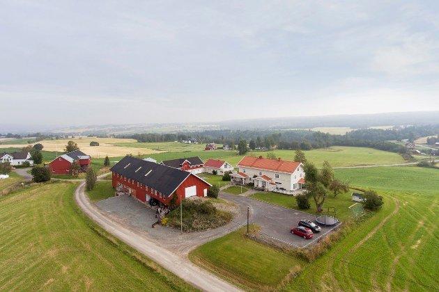 STORGARD: Holthe gård i Kolbu har en stor bygningsmasse, med blant annet sju hybler, festsal, pub og et bolighus på over 400 kvadratmeter.