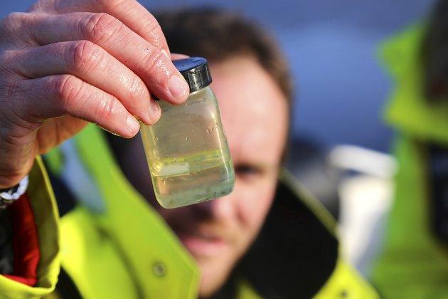 Banebrytende: - Mye av forskningen som foregår innenfor Tvedestrand kommunesgrenser, og da også i 0-fiskeområdet, er banebrytende forskning både i nasjonal og internasjonal sammenheng, sier ordfører Jan Dukene.Illustrasjonsfoto