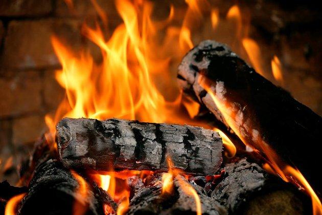 Nå som strømprisene er høye i vintermånedene; anbefaler jeg å fyre så mye man kan med ved for å holde varmen.