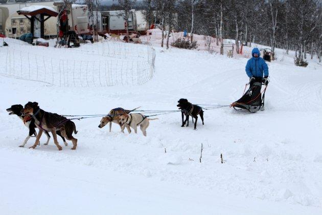 Magdalena Stenovic og spannet er i full gang med Norway Trail.