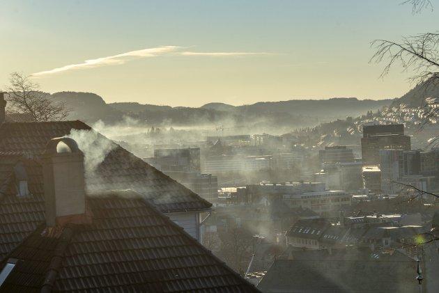 – Vi merker konsekvensene av menneskets herjinger også her i Bergen. Hva med at Bergen oppretter et internasjonalt klimafond? Vi har brukt penger i koronapandemien, men Bergen er ikke blakk. FOTO: EIRIK HAGESÆTER