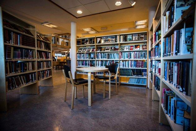 VIL VLYTTE: Gotfred Rygh og Modum SV foreslår å flytte biblioteket ut av kulturhuset ved Modum rådhus.