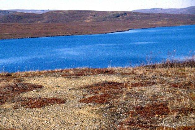 Artikkelforfatter mener det er missvisende at Finnmarkinger er blitt Herre i eget hus.