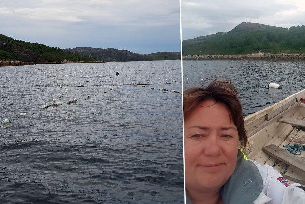 FISKESLUTT: Sjølaksefisker tar opp bruket sitt fra sjøen – tidligere enn hva det burde ha vært lov til, ifølge Mariann Wollmann Magga. Montasje.