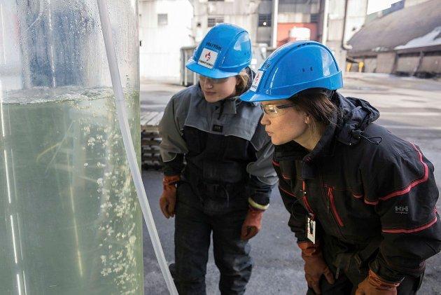 UiT-forskerne Nerea Johanna Aalto (t.v.) og Gunilla Eriksen ved algetankene på Finnfjord smelteverk.