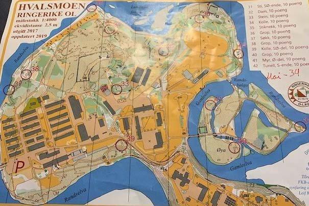 FLERE POSTER: Lokalt orienteringskart.