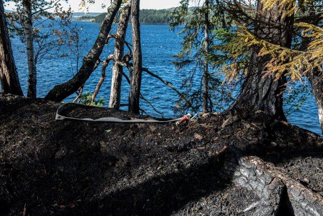 BRANNTILLØP: Branntilløp i skogbunnen på Storøya ble raskt slukket når brannmannskapene kom til stedet.