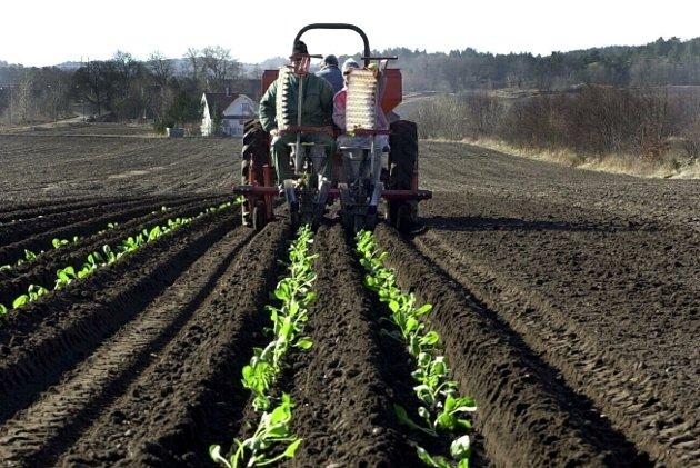 Landbruk: Orerød peker på at bønder har protestert.