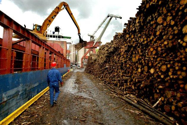 Industrien i Østfold er avhengig av sikker forsyning av tømmer året rundt, og Senterpartiet vil jobbe for å få mer av tømmertransporten over på jernbane, skriver Ole André Myhrvold. (Foto: Johnny Helgesen)