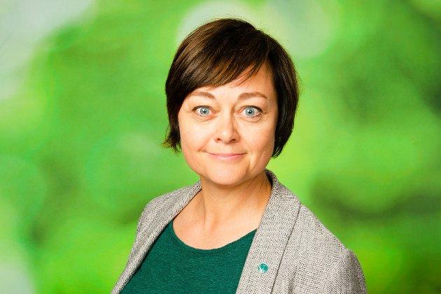 Tove Hofstad, fylkestingsrepresentant for Venstre i Viken.