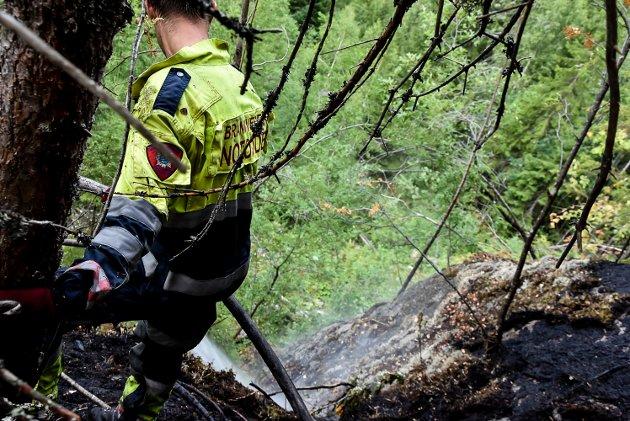 BRATT: Rolf Skeie i Notodden brannvesen fører slangen nedover skrenten slik at de får slukket skogbrann i Tverrdalen i Lisleherad. Bakken er svart etter brannen.