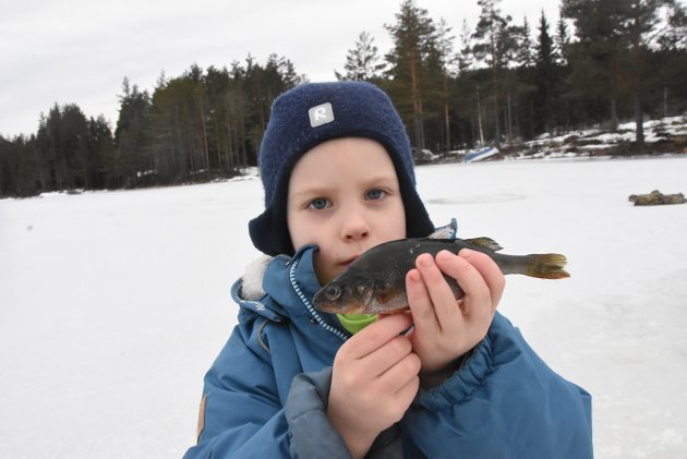 FIKK FISK: Filip Ormåsen hentet opp denne godbiten under isfiskekonkurransen.