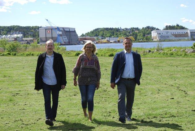 I 2015: Kjell Anders Lier (t.v.), Lene Kjølner og Terje Olsen da de sammen var kandidater for MDG i 2015. Våren 2016 gikk Kjølner tilbake til Høyre.