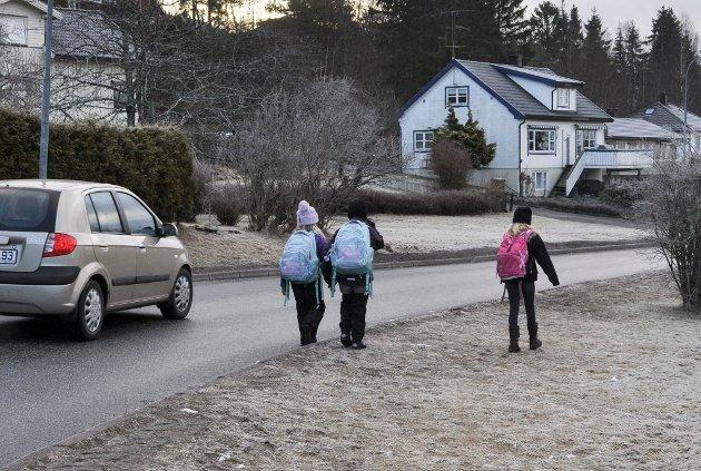 FARLIG SKOLEVEI: – Barna våre er det viktigste vi har. Det er de som er framtiden, og det er vi voksne som har ansvaret både som foreldre og trafikanter, skriver Anner Karin Johansen i Arbeiderpartiet.