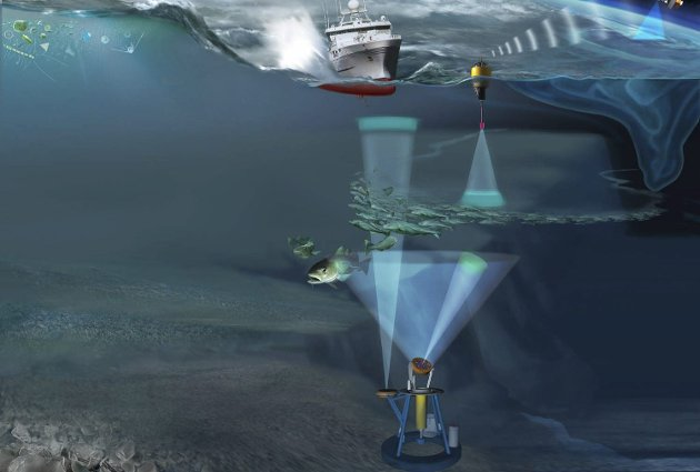 Teknologi: Observasjoner blir gjort med ny integrert teknologi, med bl.a. bunnstående sensorplattformer, satellitter og fartøy. Illustrasjon: Havforskningsinstituttet