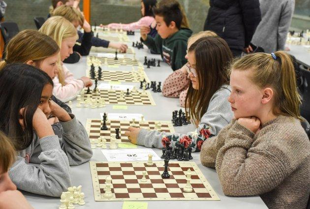 Sjakk Hegg skole