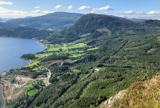 Hva slags positivitet bringer Todalsfjordprosjektet til lille Surnadal, spør Øyvind Johansen.