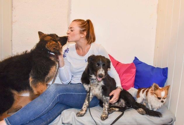 Svere gård Ingrid Loe Svere hundebarnehage