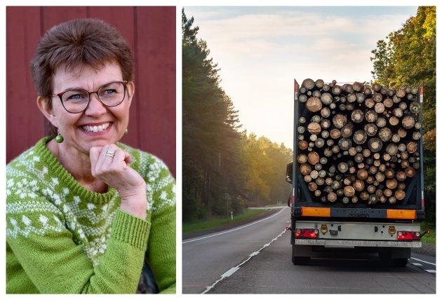 BÆREKRAFT: Vi må velge grønne og fornybare løsninger for å framtida om vi skal se barnebarna våre i øynene. Forvaltning og bærekraftig bruk av skog er kanskje det billigste og mest effektive klimatiltaket vi kan gjøre i Norge, skriver Kathrine Kleveland.