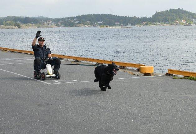 Hundepatrulje anført av hunden Varg med Vik ved rattet på full fart for å fange en kjeltring.