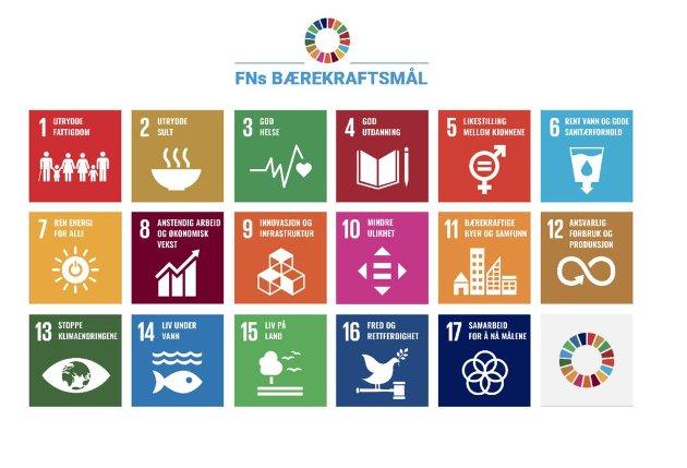 Nå skal FNs i alt 17 bærekraftsmål opp på veggen inne på Rådhuset, skriver innsenderen.