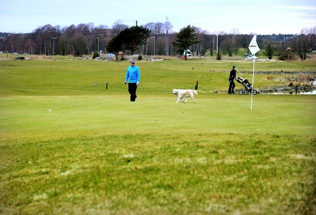 Ivrige golfere: Tidlig golfstart våren 2014. Men investeringen i anlegget er blytung til tross for økende interesse og stor innsats fra medlemmene, skriver Bernt Kristian Berntsen.