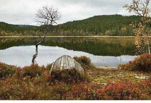 Foto: Tanja Nicolaisen