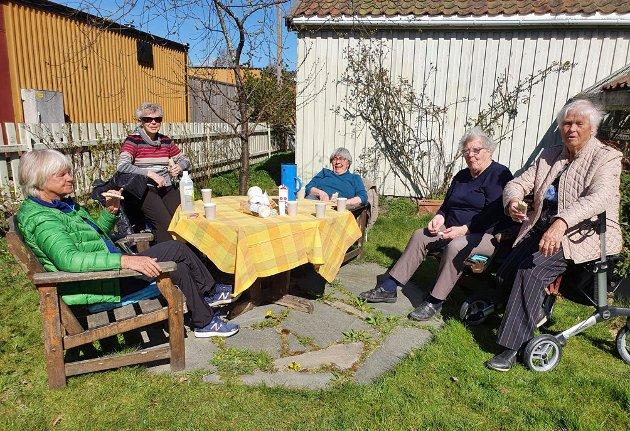 Ut i det fri: Erna (fra venstre), Kari, Bitten, Sonja, Elsa og Riitta Berger som tok bildet hygget seg sammen igjen etter lang isolasjon.
