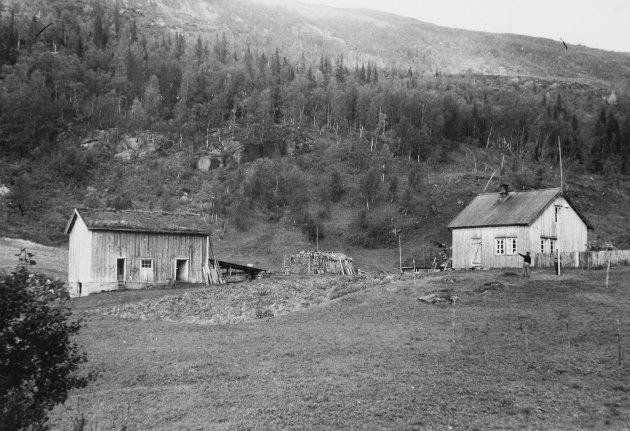 Gårder rundt Røssvatnet og Tustervatnet som ble  berørt av vasskraftutbygginga. Statkraft. 1952-3.Solheim, Kvalbukt