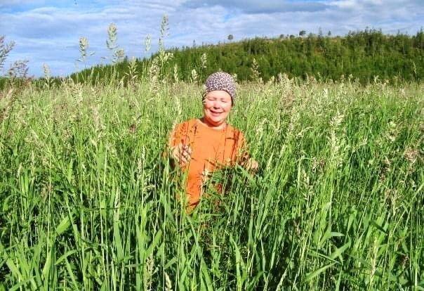 Gras er grunnlaget for mye av landbruket i nord.