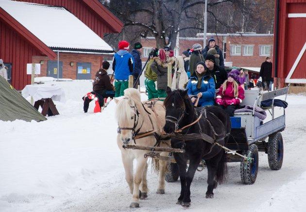 KOS: Hestene hadde nok å gjøre på Buskerud gård i helgen