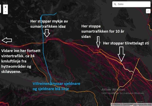 Heatmap-kart av tilrettelagd sti på Falkeriset, Rauland i Vinje. Ein ser at folk ikkje stoppar, men fortsett inn i sårbart villreinområde og truleg bli blå linje flutt lengre inn med tida. Hardangervidda har mange slike viktige randsoner, Rauland og Rossnos-området er blant desse (Kjelde: StravaHeatmap)