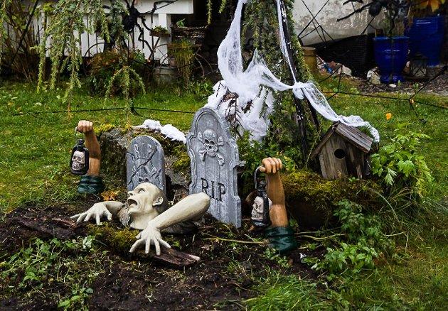 RIP: I hagen er det ein som er på veg opp frå grava