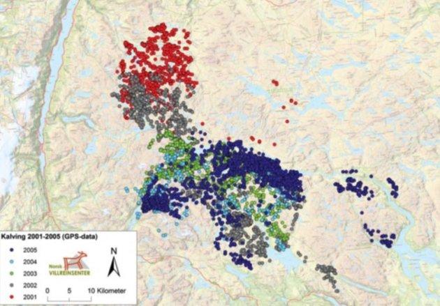AREALBRUK: Kart over arealbruken til simler under kalvingstida 15. mai – 15. juni basert på GPS (dyreposisjoner.no) for åra 2001-2005. Raude sirklar indikerer registreringar i 2001 (Henta frå Heggenes et al. i Villreinen 2011).