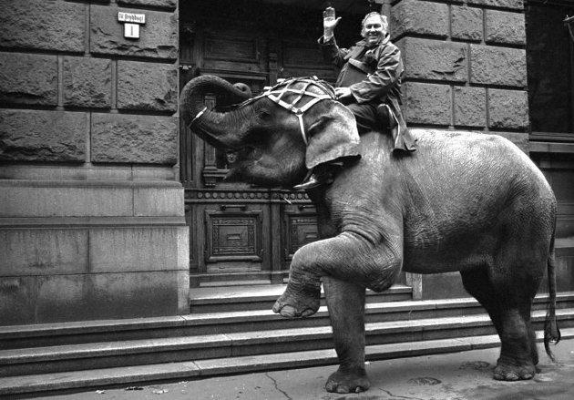 En dag i oktober 1966 ruvet sirkuskongen Arnardo godt i hovedstadens gater der han kom ridende på sin elefant på vei inn i Oslo Tinghus. Han ville føre elefanten som vitne i en rettssak der en sirkusartist krevde erstatning etter noe hun mente var et angrep av det store dyret. Elefanten kom ikke inn, men Arnardo (og elefanten) ble frikjent. (Foto: NTB)