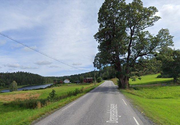 - Hva med oss som ferdes langs fylkesvei 38, enten som gående eller syklende? Har ikke vi like mye rett på sikkerhet langs veien som de som bor ned mot sentrum? undrer Astrid Wåsjø og Rolf Castor Simonsen.