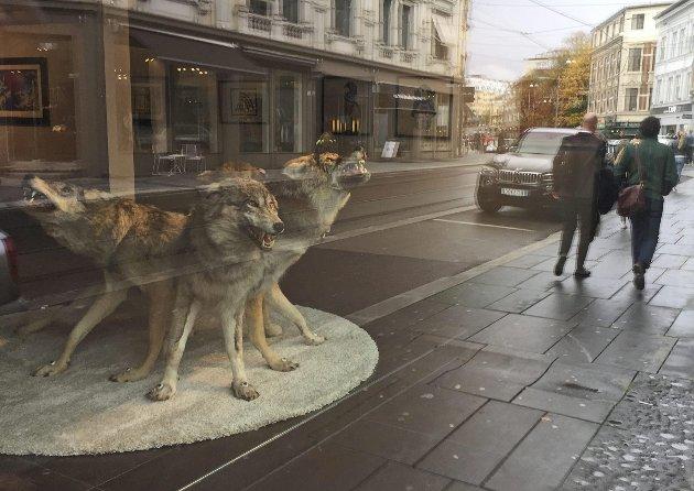 Demon-strativt:  Et mangehodet ulvetroll snerrer ut kunstnerens fordommer. Mange av mytene har overlevd, og det som skremmer mest, er at en blanding av gammel og moderne folklore eksisterer i fullt dagslys like inn i stortingssalen.Foto: Torgny Skogsrud