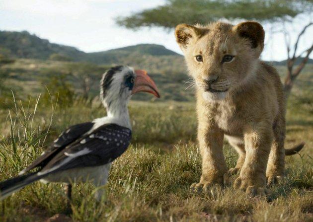 Niåringen din kommer garantert til å få lyst på en liten Simba som kjæledyr. Foreldre er herved advart. «Løvenes konge» hadde premiere på Bergen kino onsdag. foto: Disney / filmweb