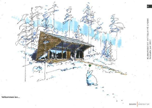 Klimapositive? Naturvernforbundet i Gran og Lunner kommenterer hytteplanene på Lygna.
