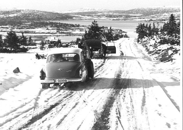 Melsjøhøgda ved Reinsvannet, Lillehammerfjellet, 1964.