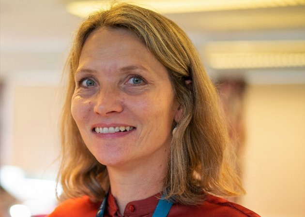 Minority Safeback-initiativets krav om språklig og kulturelt mangfold i Europa har satt dagsorden i EU. I dette kan det ligge muligheter for pågående satsinger for å revitalisere sørsamisk språk og kultur, skriver Heidi Fossland og Egil Swan Heistad.
