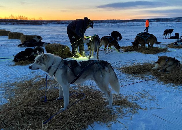 LANGE DAGER: Deltakerne i Finnmarksløpet får oppleve hva Finnmark har å by på hele døgnet på vinteren.