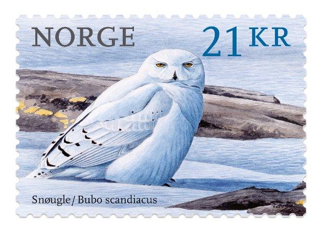 En snøugle (Bubo scandiacus) pryder dette frimerket som gis ut av Posten Norge 2. januar 2018. Som ellers i serien Norske fugler er de nye frimerkene illustrert av Viggo Ree.
