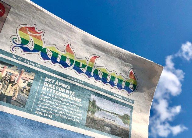 FARGERIK LOGO: Slik har logoen til avisen Hadeland sett ut denne uka.