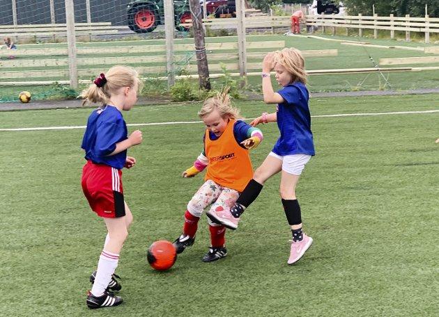 Tine Fotballskole for jenter i regi av Halsøy IL. 33 deltakere i aldersgruppen 6-10 år. Skolen ble arrangert tre kvelder fra mandag til onsdag denne uka.