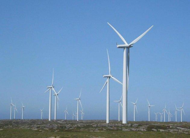 FORNYBAR: Det er rett at alt energiforbruk må verte fornyeleg, men dersom dei trur at ei storstilt utbygging av vindkraft i Norge vil «redde klima» så tek dei nok feil, derimot vil det øydelegge mykje fin norsk natur. Bildet viser vindturbinar på Smøla.