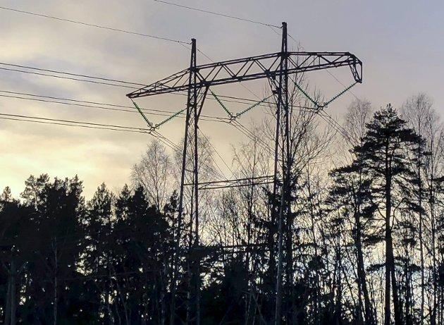Hva skjer?: Neste år blir Østfold en del av Viken: Kronikkforfatterne stiller spørsmålet om hva man skal gjøre med energiselskapene.