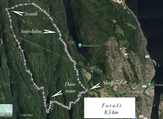 Dagens tur:  Vi startet på Skalland og gikk veien innover mot Vassås og opp Steindalen og Bollsteinkleivane til Svanlihytta hvor vi gikk mot sør langs Stegaåsen til Damvann, rundt enden av vannet og myra, over Breimyr og opp til Hellumvannet før vi kom ned til Skalland.  Turen målte rundt 8,5 km.